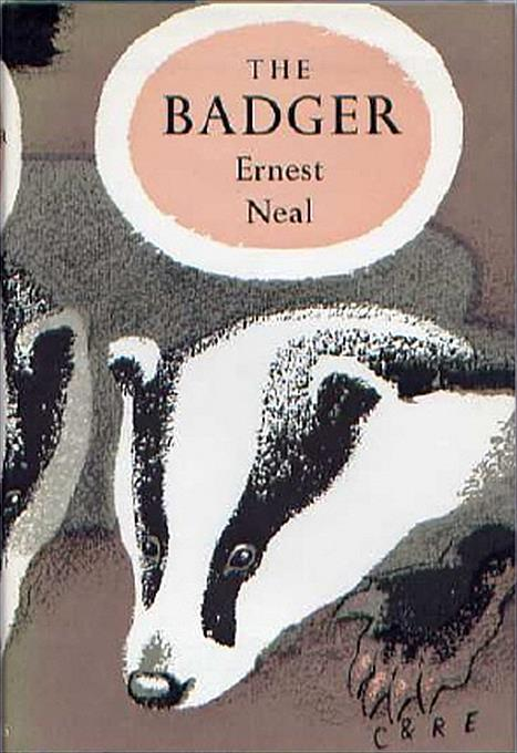 Ernest Neal: The Badger
